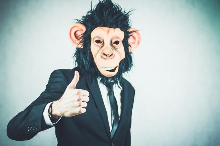 monkey-2710658_960_720